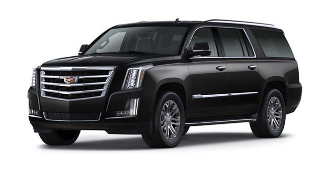 Executive Cadillac Escalade SUV